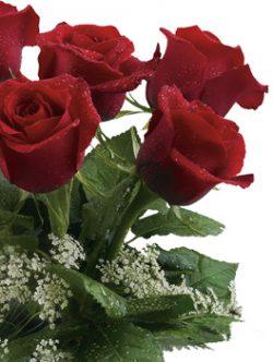 Tư vấn tặng quà ý nghĩa những cánh hoa hồng